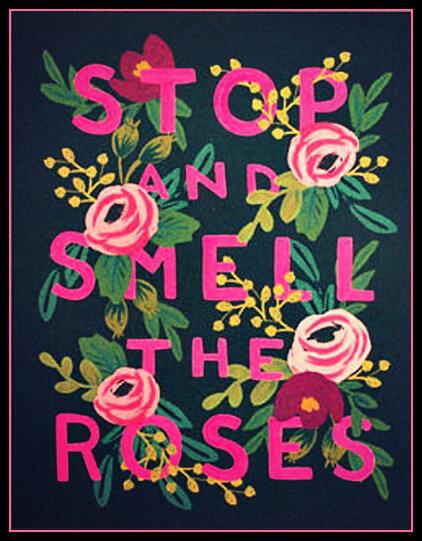 Остановись и вдохни аромат роз.jpg