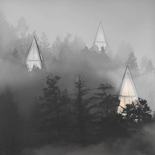 Эко дом в лесу