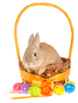 Easter (17).png