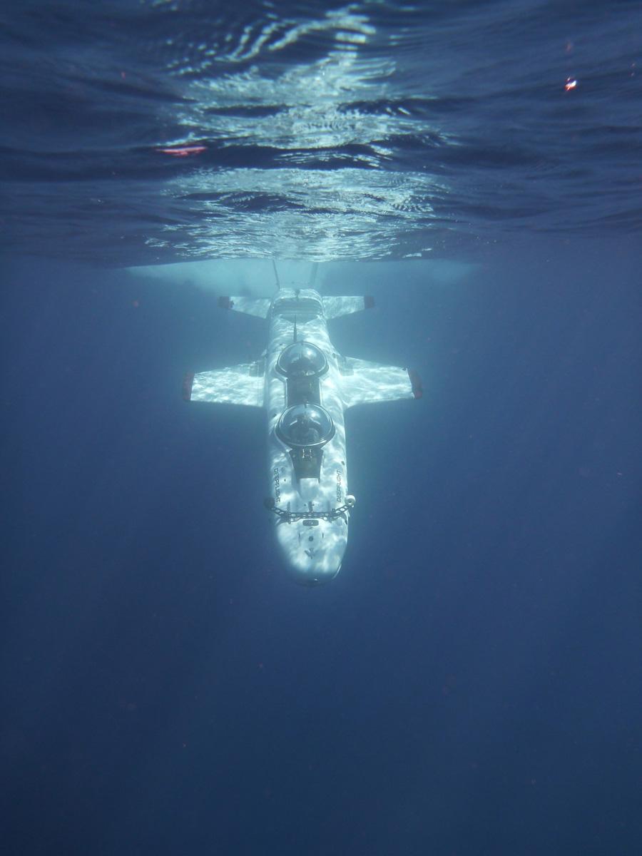 Под водой на крыльях (11 фото)