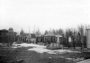 Аллея на Преображенском еврейском кладбище.