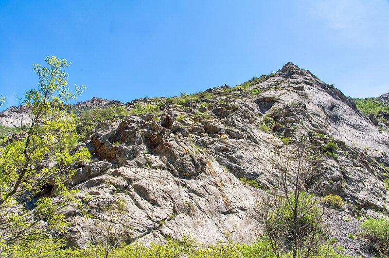 Природа Кызылатинки