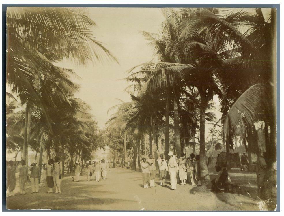 Сен-Луи, авеню Серватин. 1900