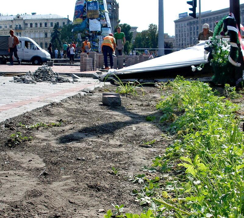 Петрушка на Майдане