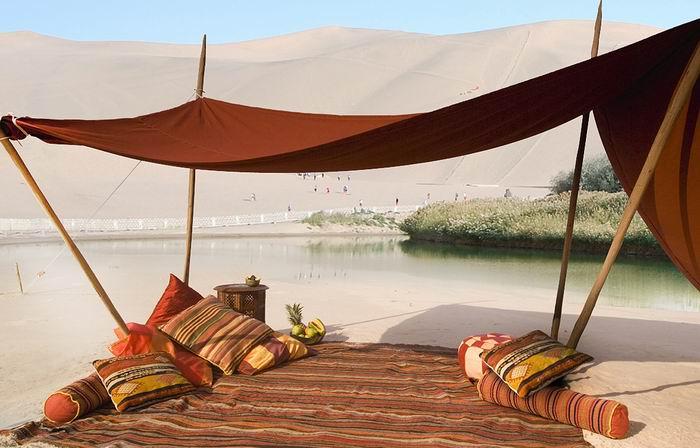 Сад в аравийской пустыне. Международный ботанический сад короля Абдаллы / KAIG