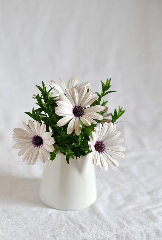 цветочки...