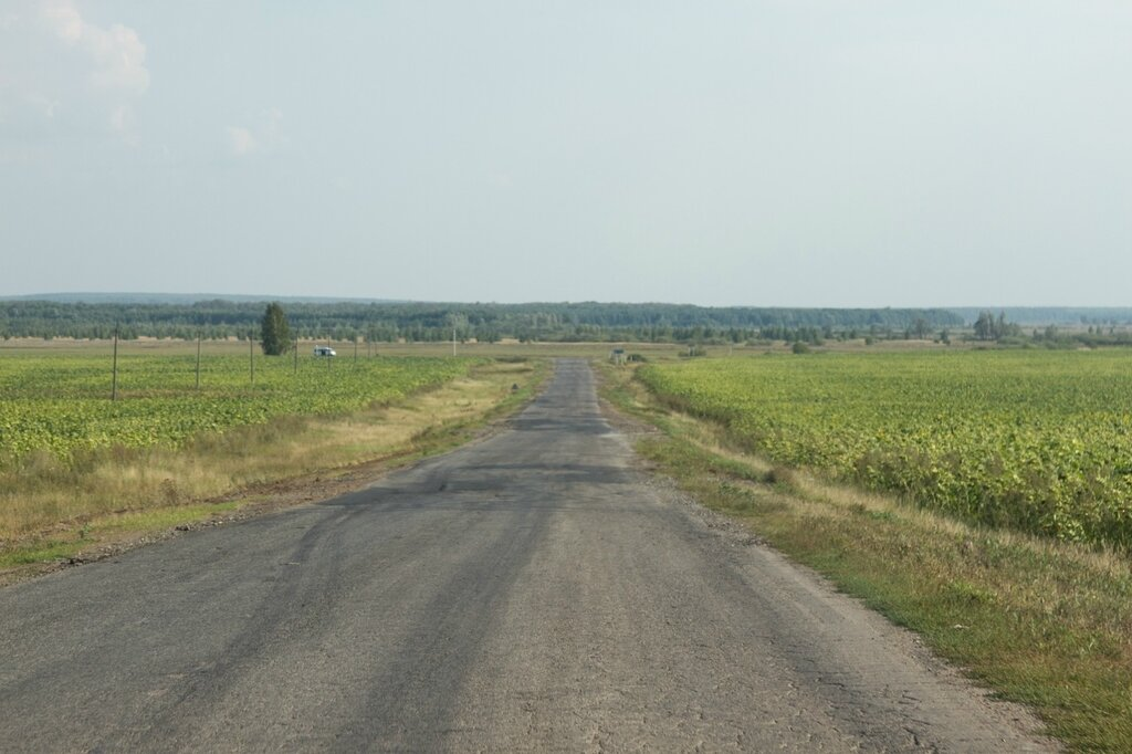 Местная дорога в Ульяновской области