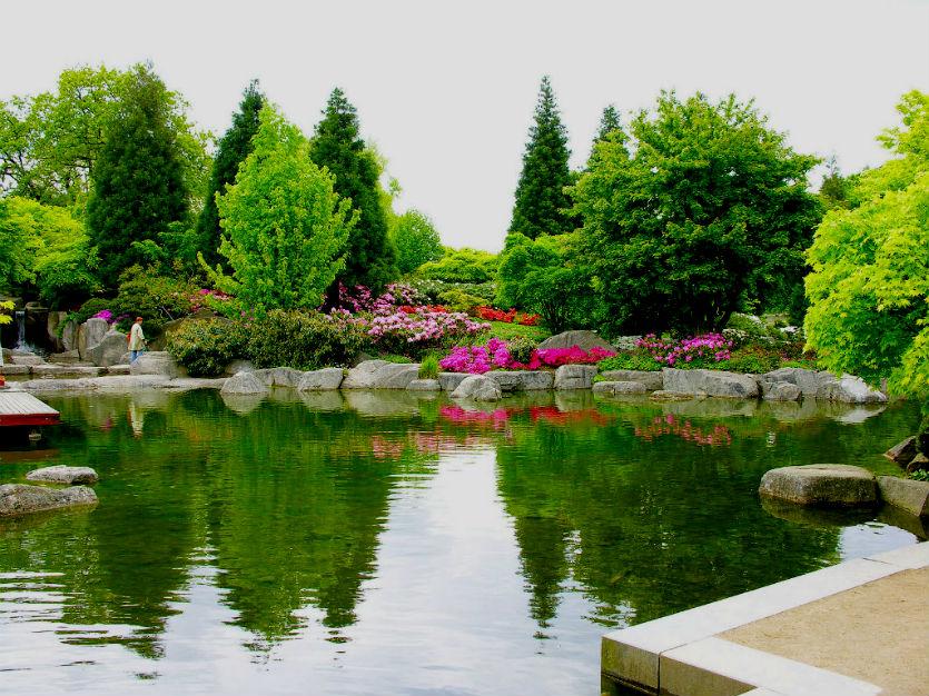 Botanischer Garten Hamburg (Ботанический сад Гамбурга)