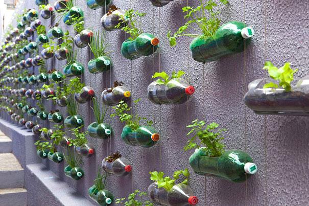 Живая стена из пластиковых бутылок