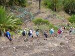 Ущелье Маска (остров Тенерифе) - поход (треккинг)