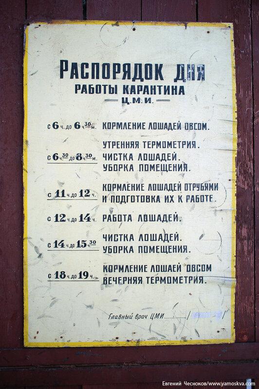 04н. Московский ипподром. 19.01.14.011..jpg