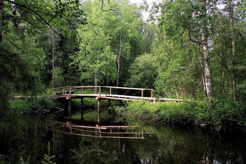 Лесной мост через Малую Рёжму