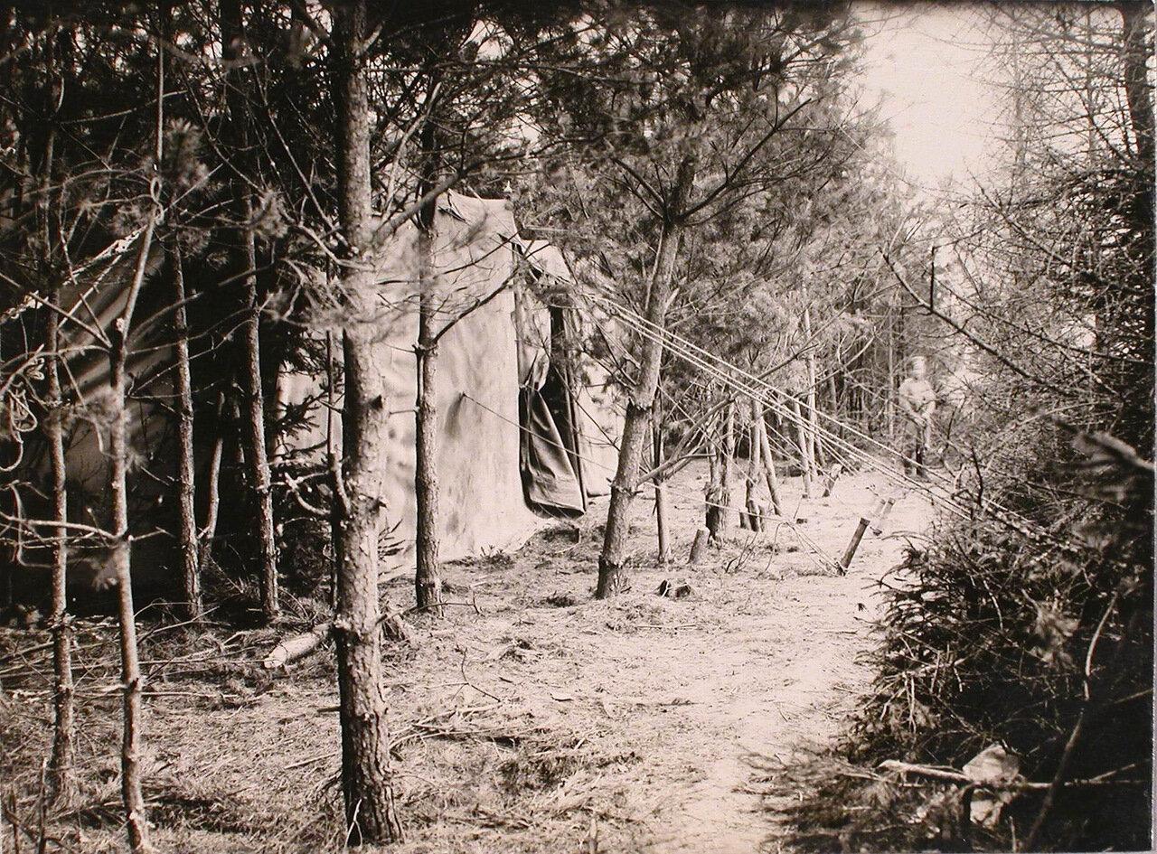 21. Вид замаскированного ангара в лесу. Март 1915. Радомская губерния, ст. Конск