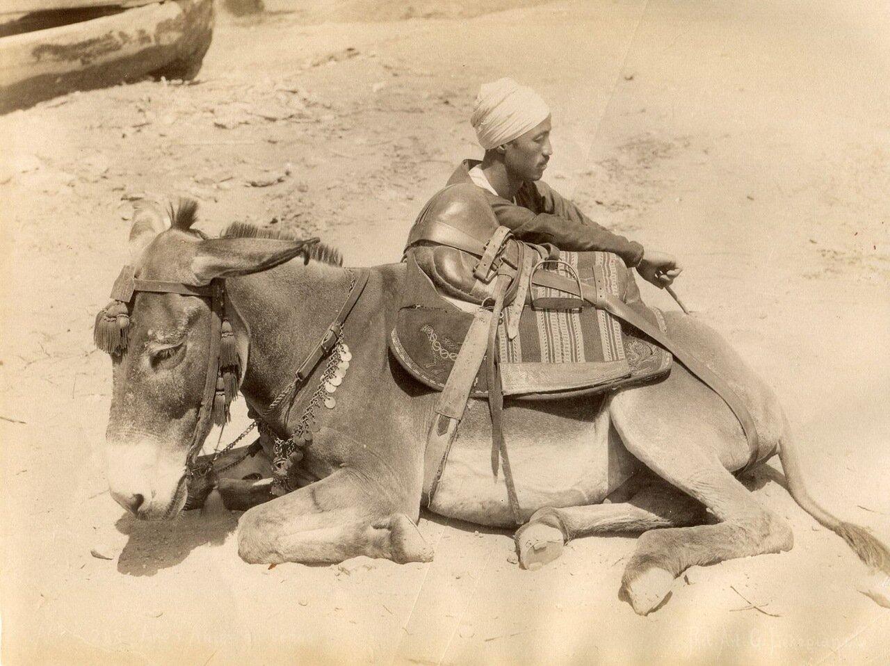 Человек с ослом