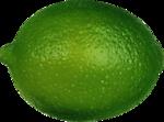 Lemony-freshness_elmt (58).png
