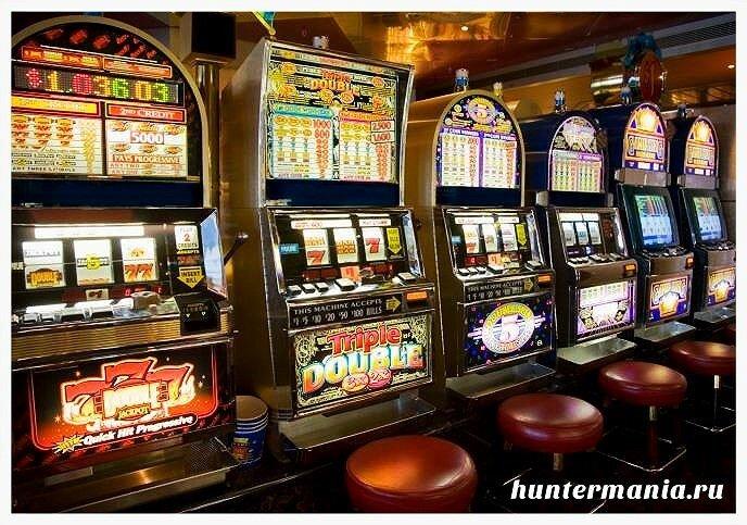 Играть на деньги или бесплатно?