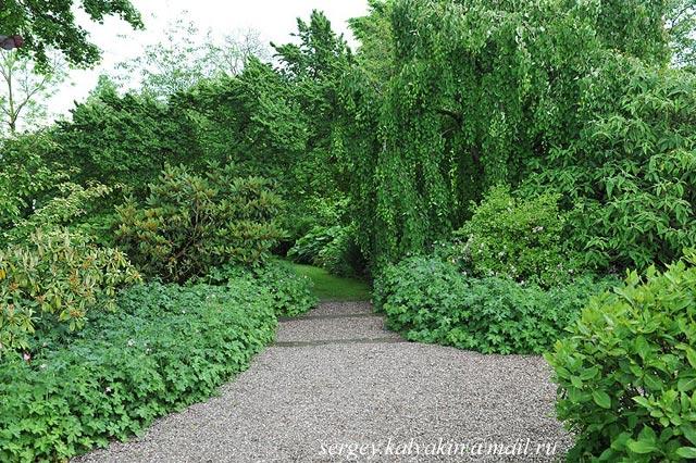 Wollerton Old Hall Garden 221.JPG