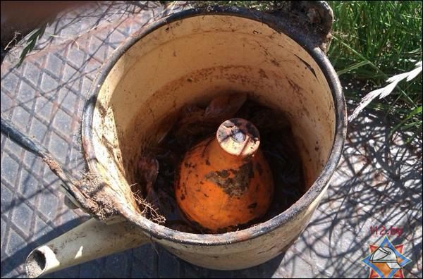 Брестчанин выкопал в своем огороде килограмм ртути