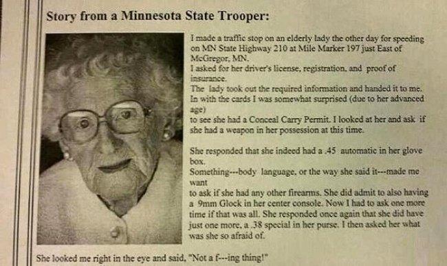 Как-то раз я остановил пожилую даму...
