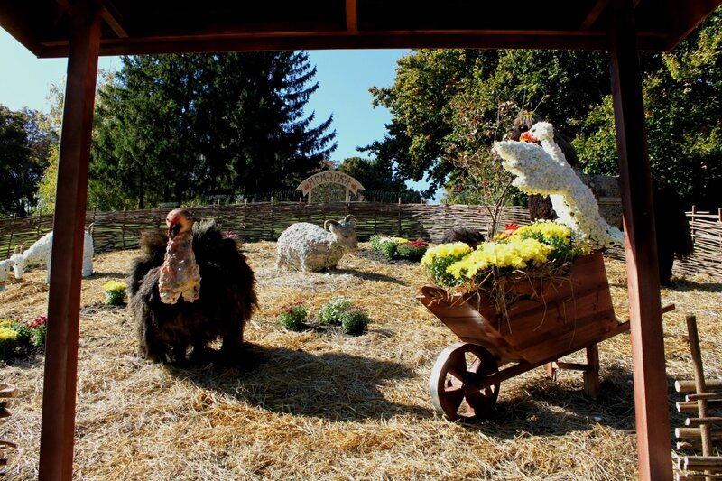 Индюк, козы и курица