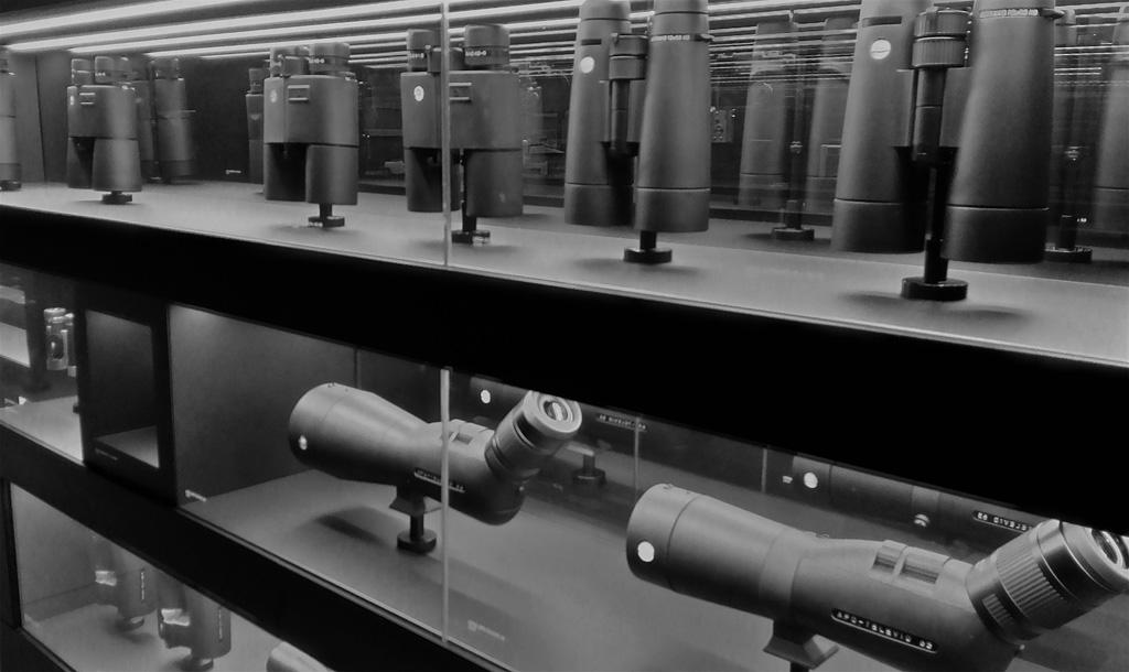 5. Бинокли и прицелы Leica