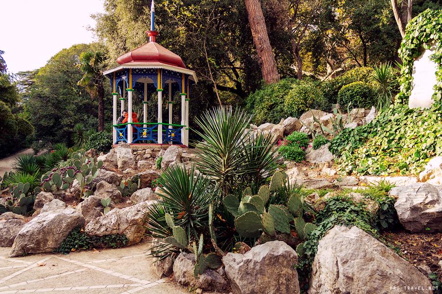 Никитский ботанический сад в ноябре