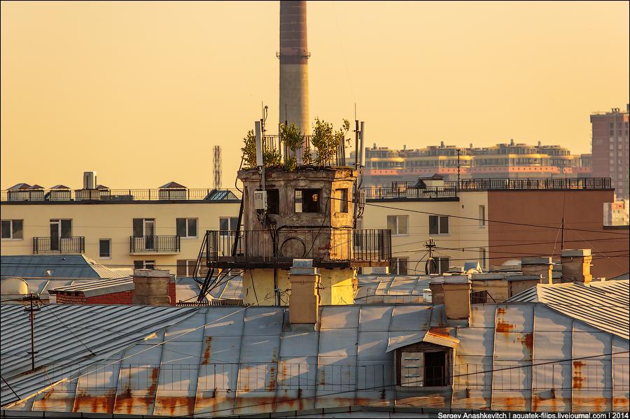 Прогулка по питерским крышам
