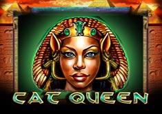 Cat Queen бесплатно, без регистрации от PlayTech