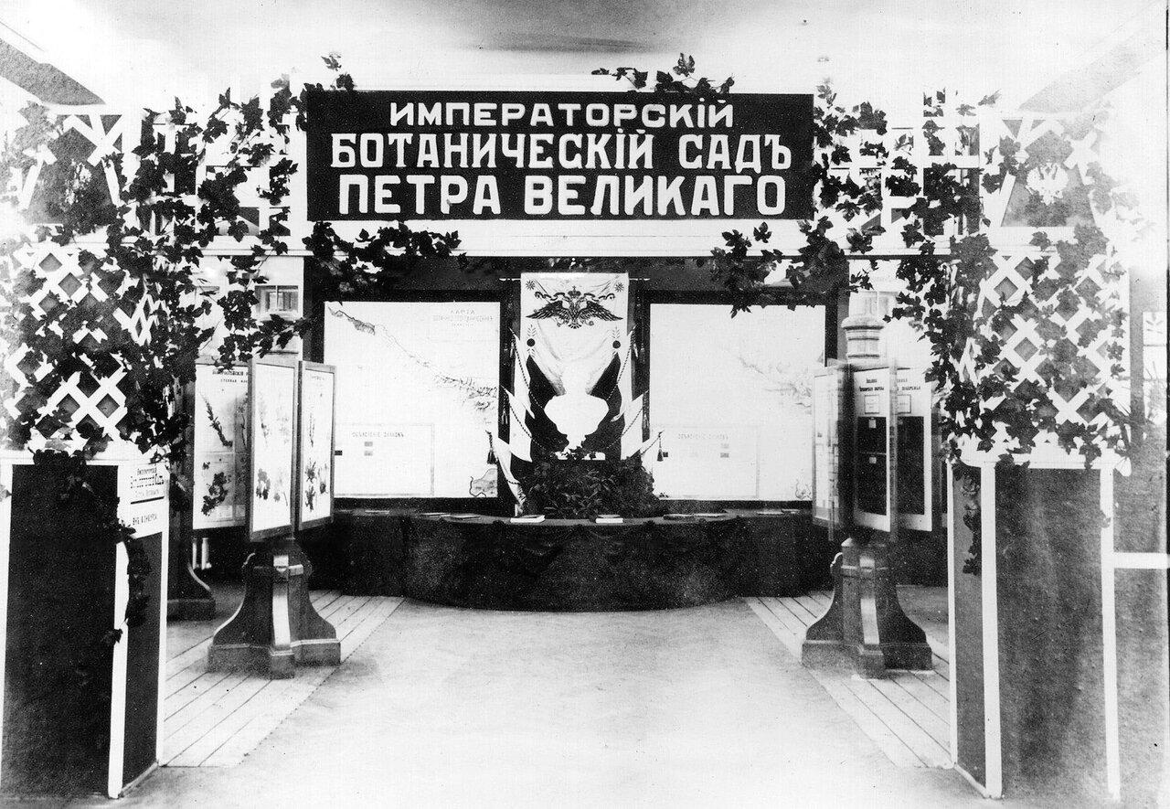 20. Фрагмент юбилейной выставки, подготовленной к празднованию 200-летнего юбилея Ботанического сада. 1913