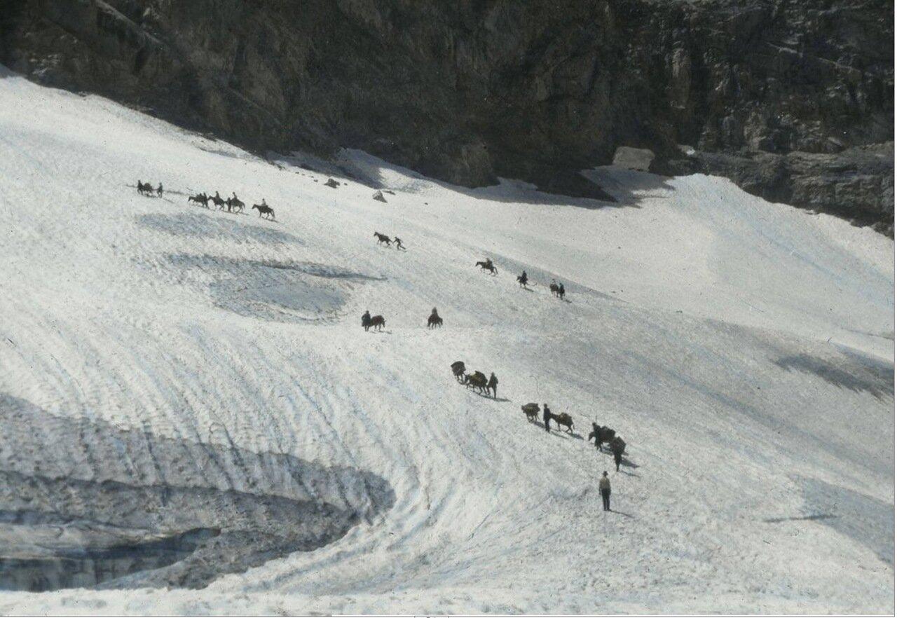 Лошади и вьючные животные на перевале в Сванетии