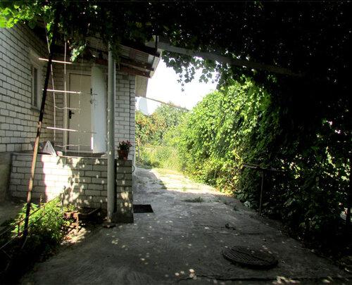прогулка уже дома IMG_4540.jpg