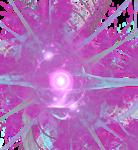 Apophysis-081021-2.png