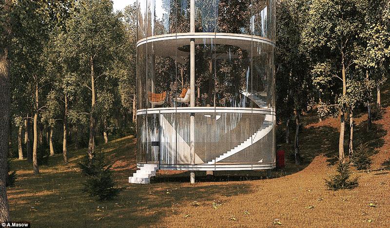 Дом построеный вокруг дерева