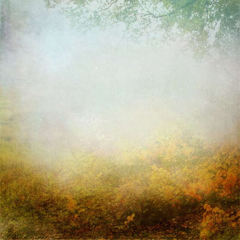 sarayane_autumnfeeling (10).jpg
