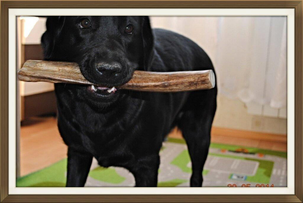 http://img-fotki.yandex.ru/get/6820/221225500.9/0_fa0a3_59df3fe1_XXL.jpg