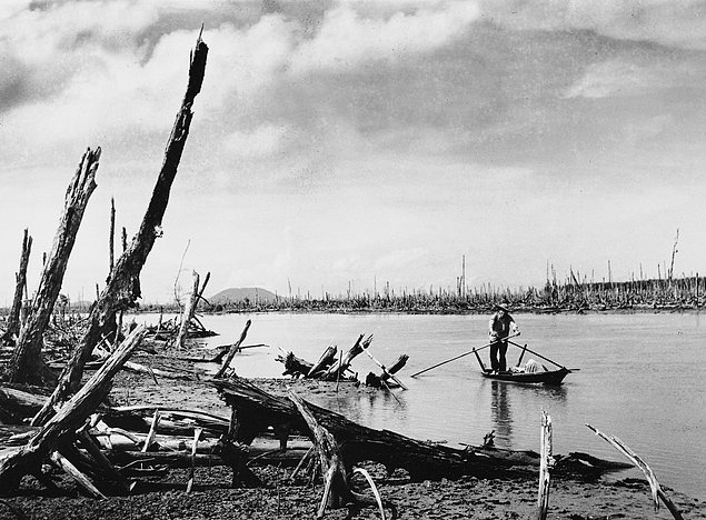Партизан, плывущий на лодке в дельте р.Меконг. На берегах вы можете увидеть лес, уничтоженный химиче
