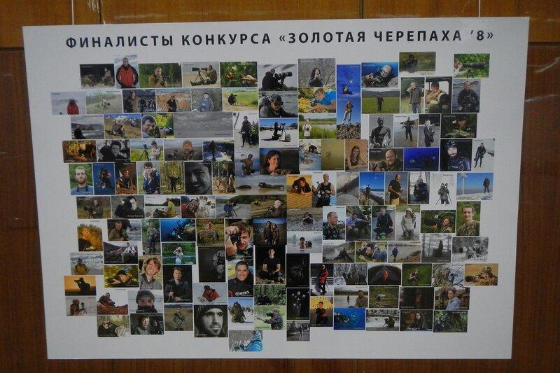 Портреты финалистов конкурса Золотая Черепаха-8