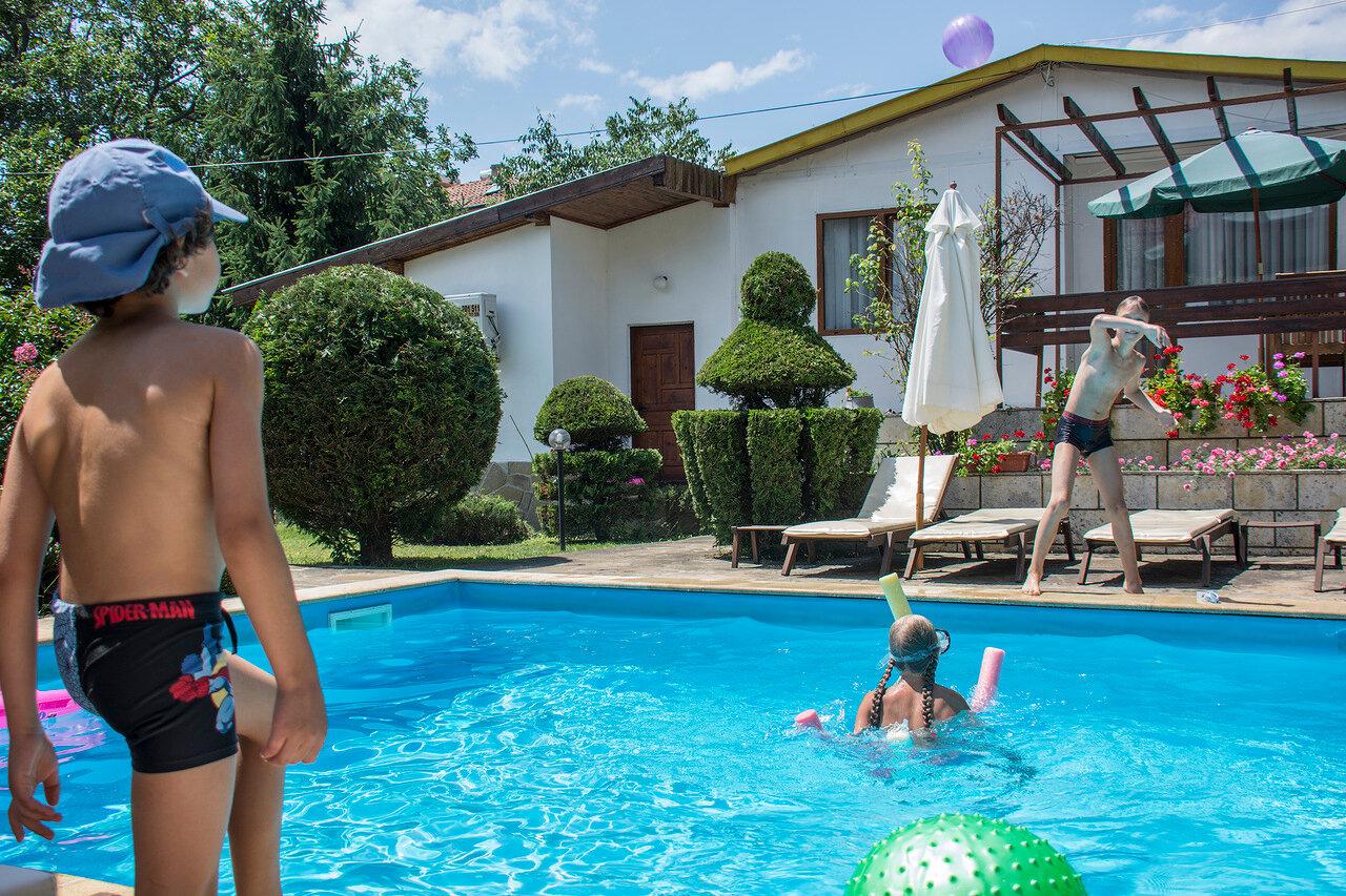 Волейбол с собачкой в бассейне