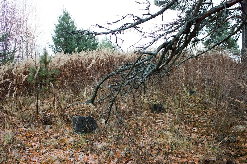 кладбище в деревне Кругликово староверческие могилы