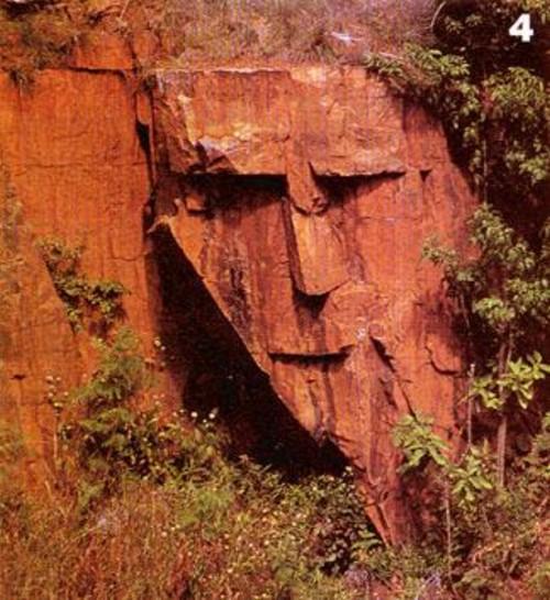 Голова индейца природного происхождения
