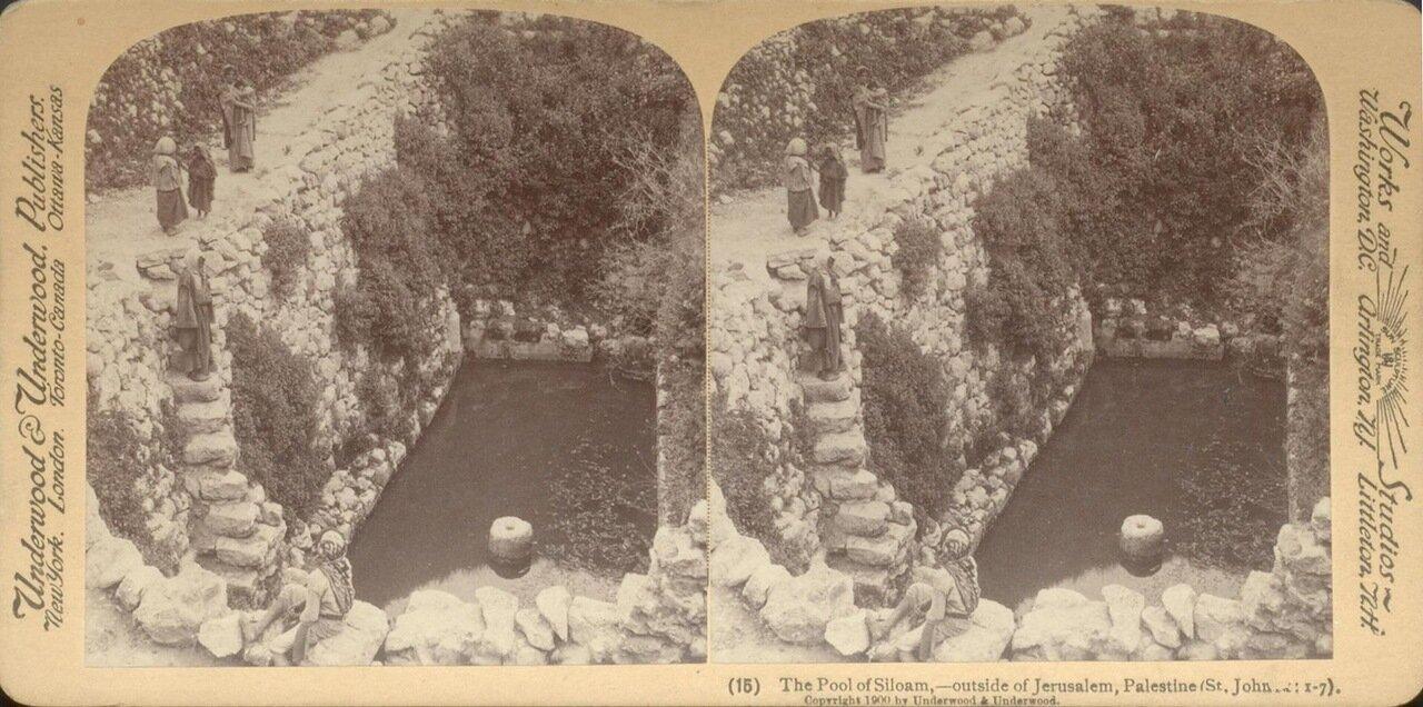 Силоамский бассейн. 1900