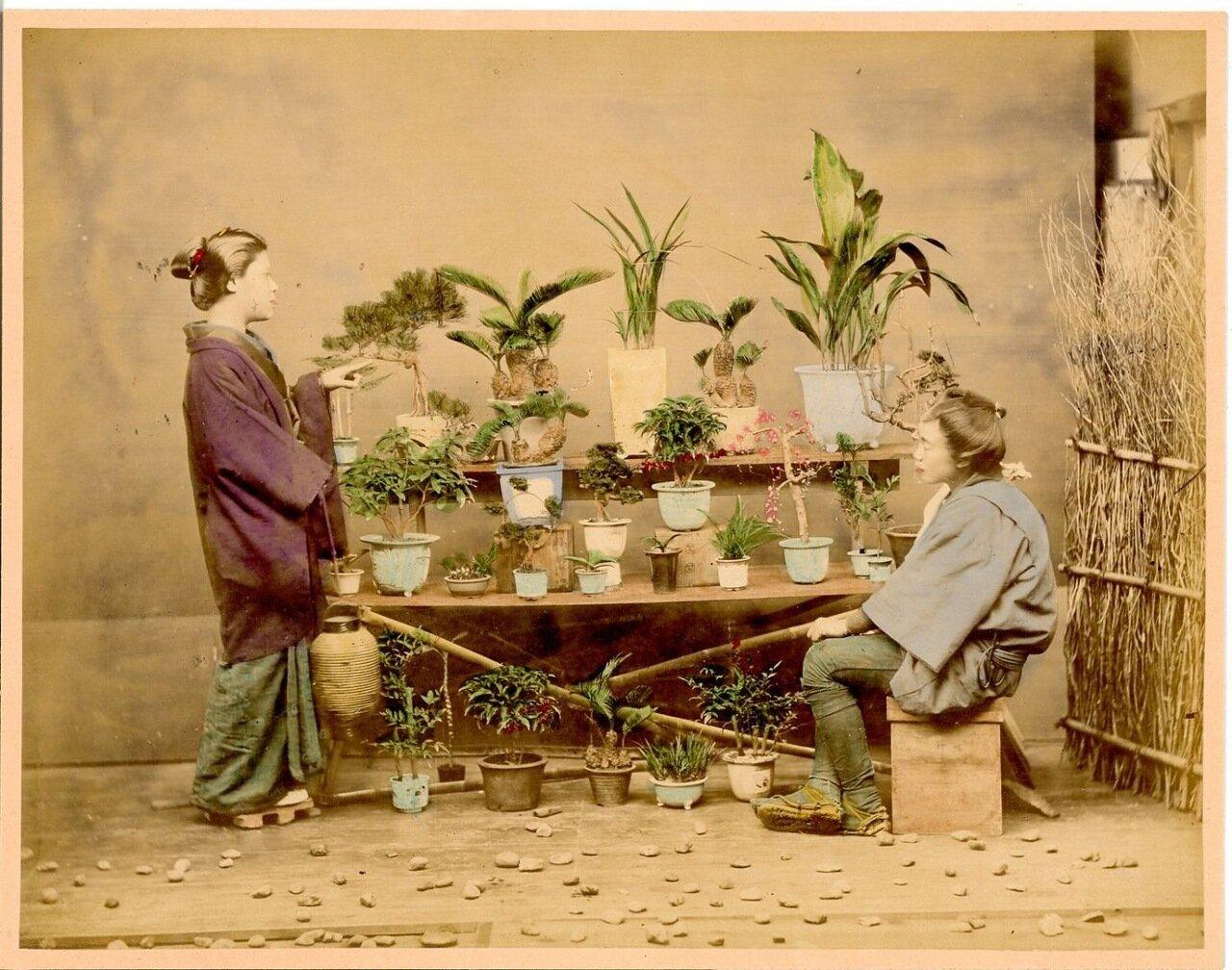 Продавец растений