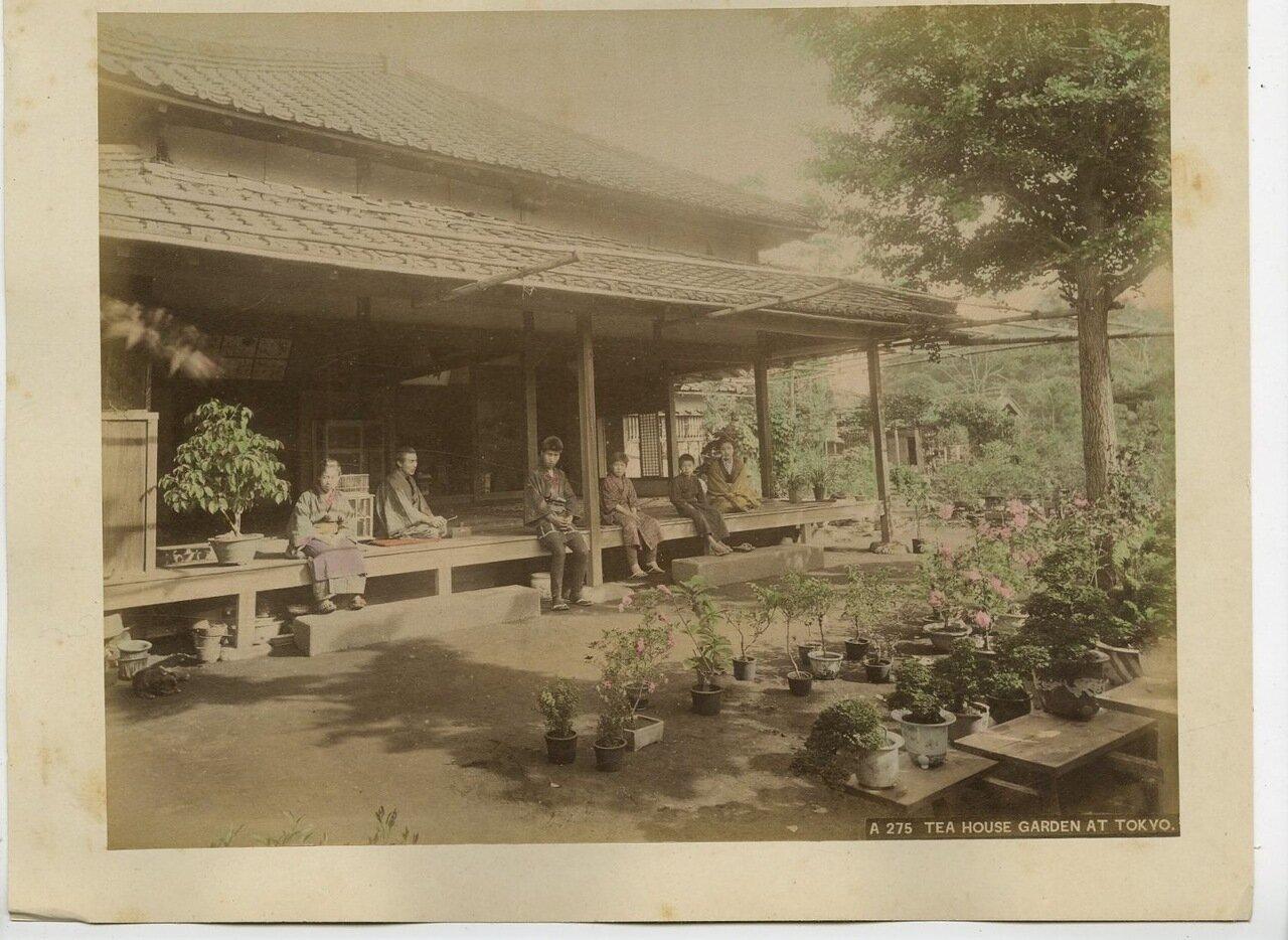 Токио. Чайный домик с садом