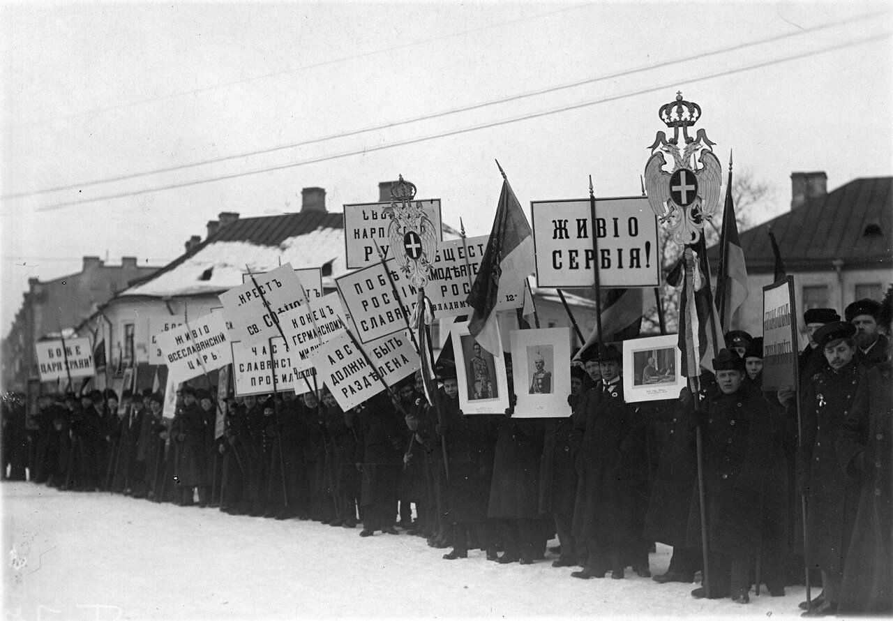 11. Группа манифестантов с плакатами и правительственными флагами