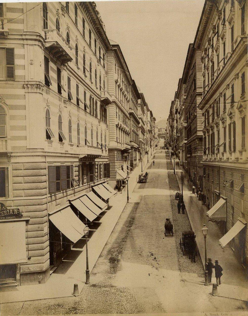 Улица Ассаротти