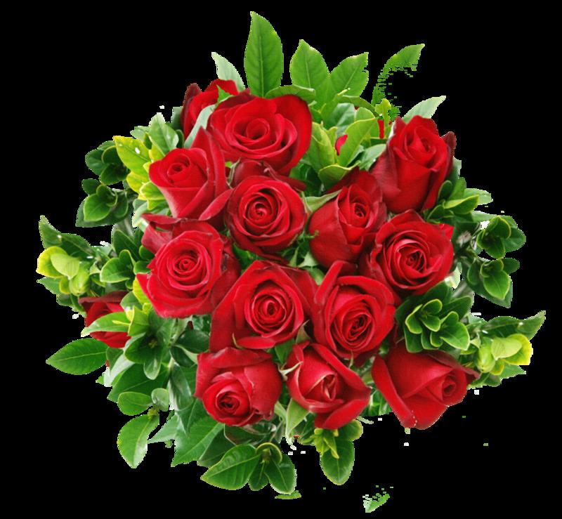 Букет красных цветов на белом фоне