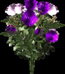 цветы (113).png