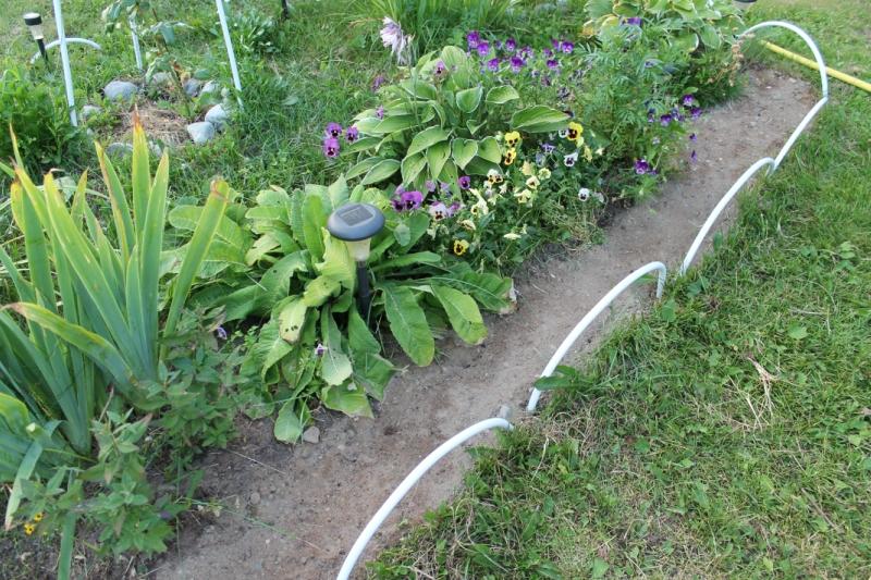Как сделать красивую границу между газоном и цветником - моя граница