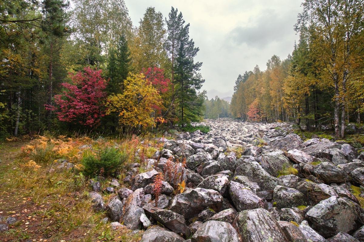 Каменная река в осенних красках (29.09.2014)