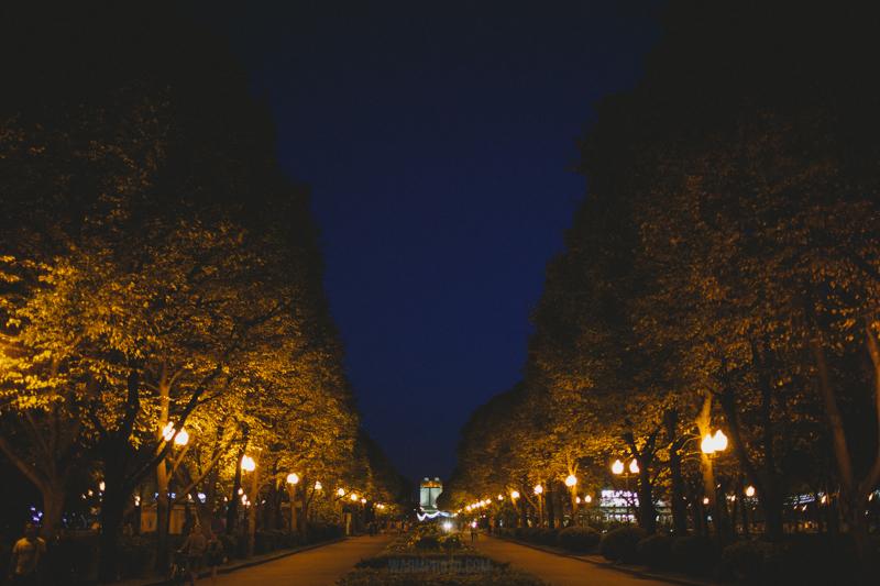 Центральный Парк культуры и отдыха им.М.Горького